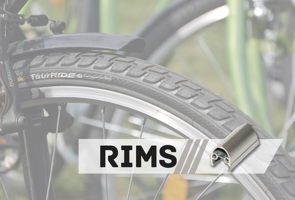 RIMS-made in VN